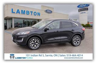 Used 2020 Ford Escape SEL for sale in Sarnia, ON