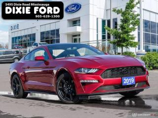 Used 2019 Ford Mustang EcoBoost for sale in Mississauga, ON