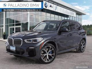 Used 2019 BMW X5 xDrive40i for sale in Sudbury, ON