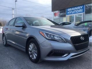 Used 2016 Hyundai Sonata Hybrid Hybrid - Bluetooth - Backup Camera - Push Start for sale in Cornwall, ON