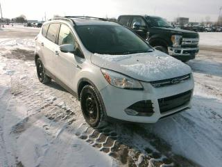 Used 2013 Ford Escape SEL for sale in Waterloo, ON