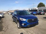 Photo of Blue 2017 Ford Escape