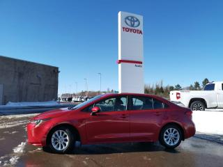 Used 2020 Toyota Corolla LE for sale in Moncton, NB