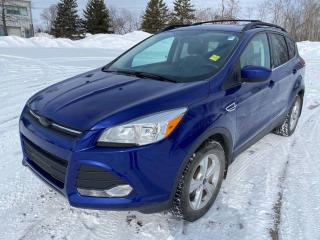 Used 2014 Ford Escape SE 4WD for sale in Ottawa, ON