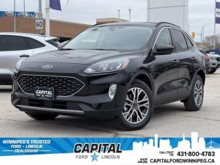 New 2021 Ford Escape SEL Hybrid for sale in Winnipeg, MB
