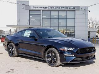 New 2021 Ford Mustang GT 1.49% APR | AUTO | BLK ACNT PKG for sale in Winnipeg, MB