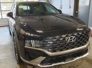 New 2021 Hyundai Santa Fe 2.5T ULTIMATE CALLIGRAPHY AWD NO OPTIONS for sale in Port Hawkesbury, NS
