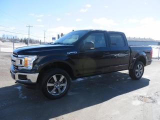 Used 2020 Ford F-150 XL cabine SuperCrew 4RM caisse de 5,5 pi for sale in Lévis, QC