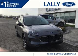 New 2021 Ford Escape SE for sale in Tilbury, ON