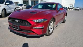 Used 2018 Ford Mustang ECOBOOST - AUTO, BLUETOOTH, SMART KEY for sale in Kingston, ON