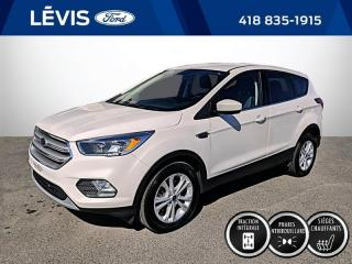 Used 2019 Ford Escape SE 4WD for sale in Lévis, QC