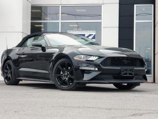 Used 2019 Ford Mustang EcoBoost for sale in Kingston, ON