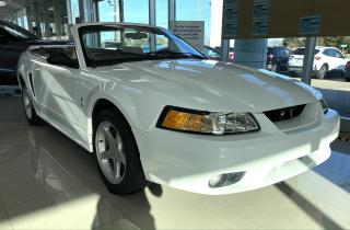 Used 1999 Ford Mustang SVT COBRA for sale in Oakville, ON