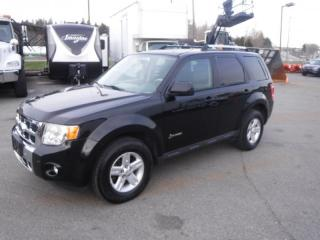 Used 2009 Ford Escape Hybrid AWD for sale in Burnaby, BC