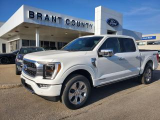 New 2021 Ford F-150 PLATINUM for sale in Brantford, ON
