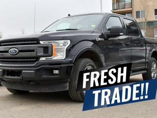 Used 2019 Ford F-150 XLT for sale in Red Deer, AB