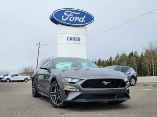 New 2021 Ford Mustang GT Fastback for sale in Port Hawkesbury, NS
