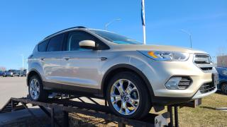 Used 2017 Ford Escape FWD 4dr SE for sale in Kingston, ON