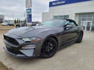 Used 2019 Ford Mustang CONVERTABLE/LEATHER/BACKUPCAM/HEATEDSEATS for sale in Edmonton, AB