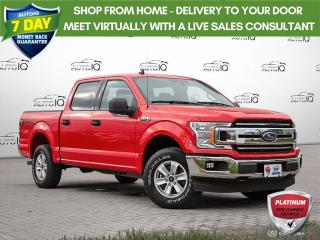 Used 2019 Ford F-150 XLT | ONE OWNER | NO ACCIDENTS | EXTERIOR PARKING CAMERA | for sale in Barrie, ON