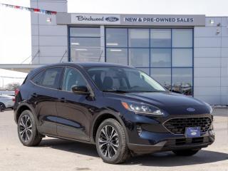 New 2021 Ford Escape SE Hybrid 0% APR | 201A | SPORT PKG for sale in Winnipeg, MB