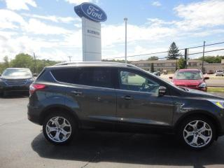 Used 2017 Ford Escape Titanium for sale in Forest, ON