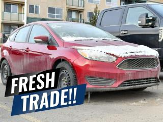 Used 2016 Ford Focus SE for sale in Red Deer, AB