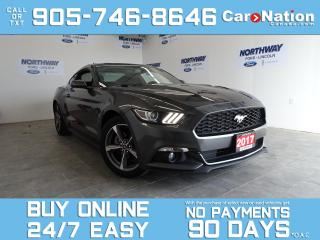 Used 2017 Ford Mustang V6 | 6 SPEED M/T | REAR CAM | COOL RIDE! for sale in Brantford, ON