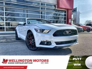 Used 2015 Ford Mustang GT Premium for sale in Guelph, ON