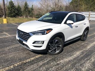 Used 2019 Hyundai Tucson Ultimate AWD for sale in Cayuga, ON