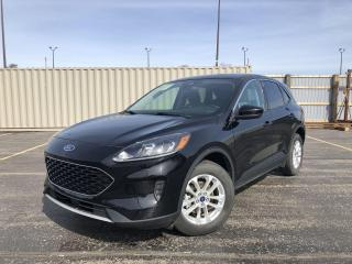 Used 2020 Ford Escape SE AWD for sale in Cayuga, ON