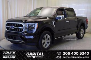 New 2021 Ford F-150 PLATINUM for sale in Regina, SK