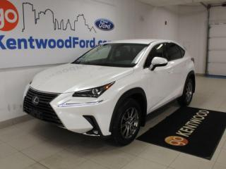 Used 2019 Lexus NX NX 300 | AWD | Heated Leather | No Accidents for sale in Edmonton, AB