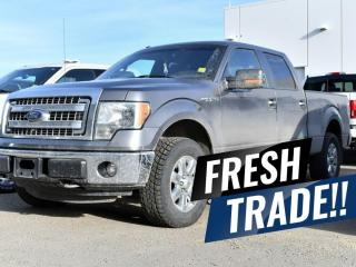 Used 2013 Ford F-150 XLT for sale in Red Deer, AB