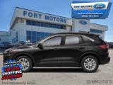 2021 Ford Escape SE AWD  - Navigation - Power Liftgate - $242 B/W