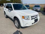 Photo of White 2009 Ford Escape