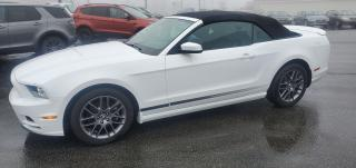 Used 2014 Ford Mustang V6 Premium for sale in Mount Pearl, NL