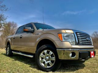 Used 2011 Ford F-150 XLT / XTR for sale in Guelph, ON