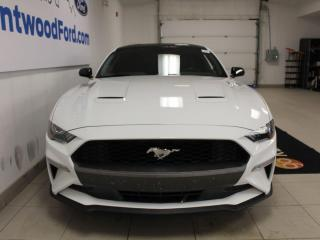 Used 2019 Ford Mustang EcoBoost for sale in Edmonton, AB