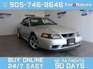 Used 2001 Ford Mustang SVT COBRA | CONVERTIBLE | 5 SPEED M/T | LOW KMS! for sale in Brantford, ON