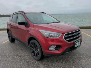 Used 2019 Ford Escape SE Low K's 4x4 Heated Seats Bluetooth/CarPlay Backup Cam for sale in Belle River, ON