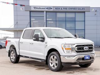 New 2021 Ford F-150 XLT 1.49% APR   301A   XTR   ECO   NAV   for sale in Winnipeg, MB