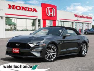 Used 2019 Ford Mustang GT Premium for sale in Waterloo, ON