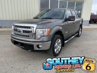 Used 2013 Ford F-150 XLT for sale in Southey, SK