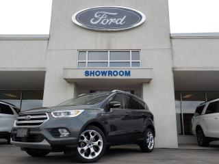Used 2018 Ford Escape Titanium for sale in Mount Brydges, ON