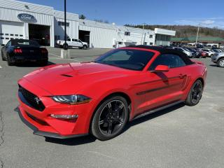 Used 2019 Ford Mustang GT haut niveau décapotable for sale in Vallée-Jonction, QC