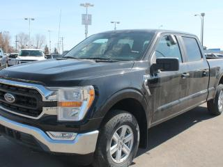 New 2021 Ford F-150 XLT | 6.5' Box | 300a | Trailer Tow | Fold Console for sale in Edmonton, AB
