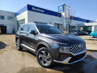 New 2021 Hyundai Santa Fe TREND: BLUELINK/LEATHER/SUNROOF/FULL SAFETY PKG for sale in Edmonton, AB
