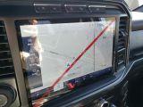 2021 Ford F-150 XLT  - Sunroof - $448 B/W