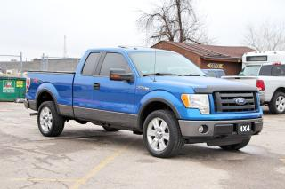 Used 2010 Ford F-150 FX4 for sale in Brampton, ON